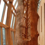 Creating a Space to Be