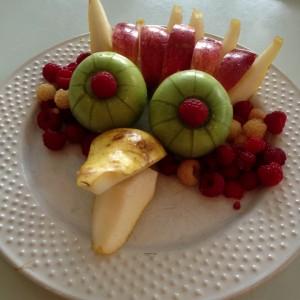 fruitbird